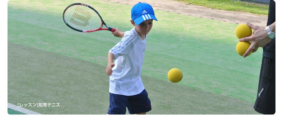[レッスン]知育テニス